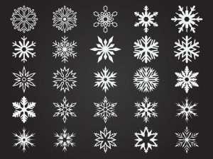 Racism -- Snowflake